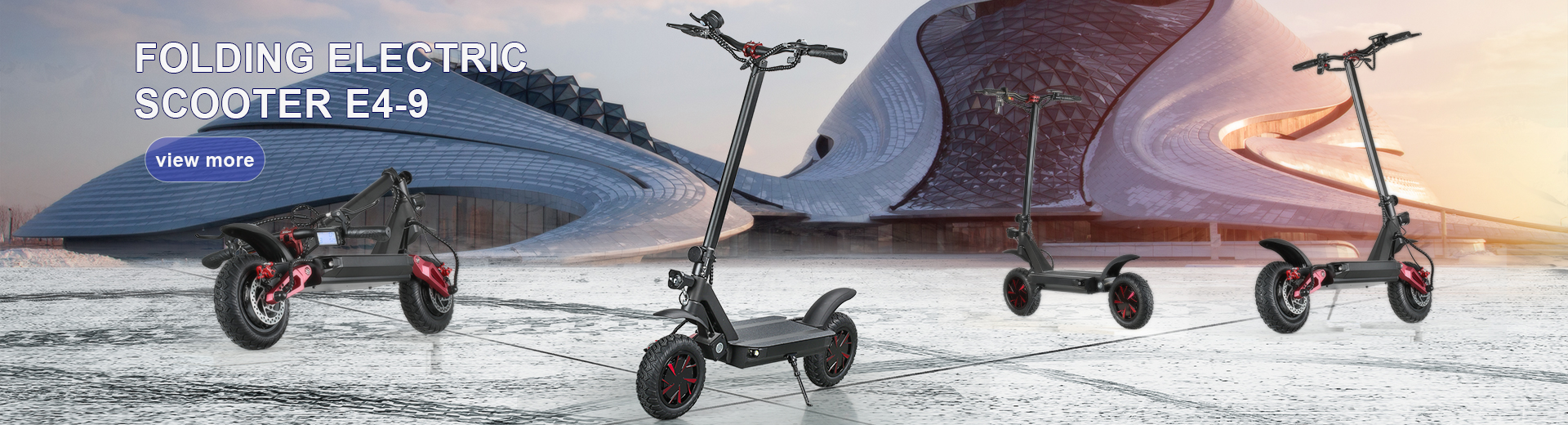 Folding Electric Scooter E4