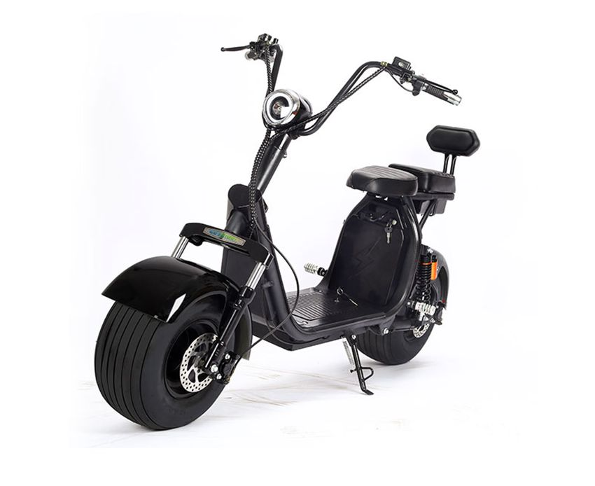 EcoRider E5-7 Removable battery Citycoco Harley Electric Scooter