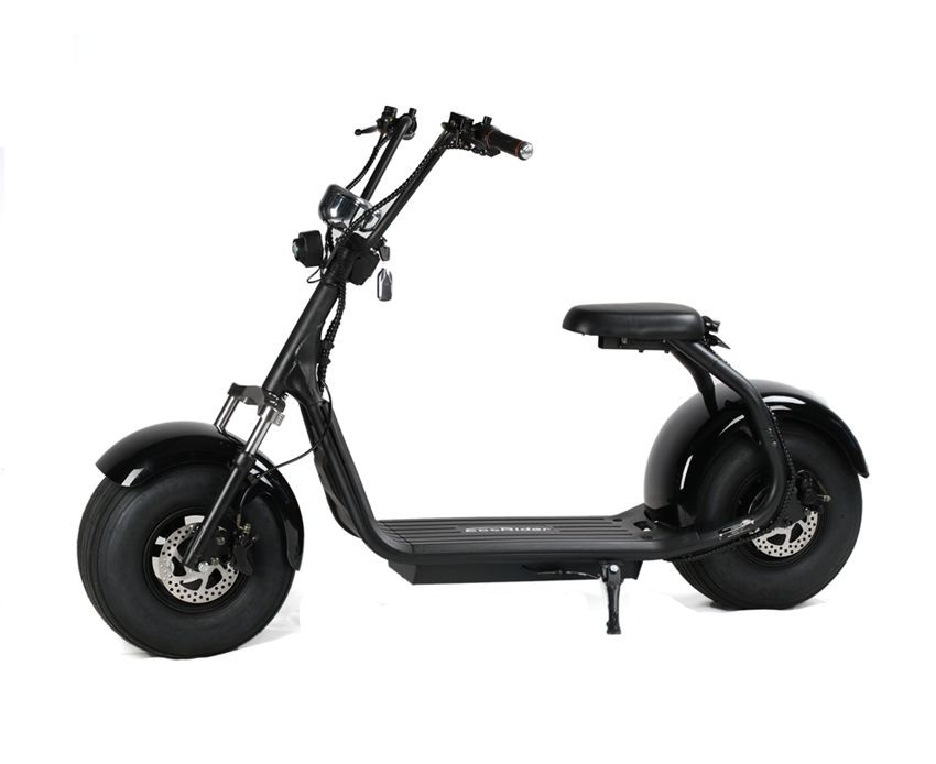 EcoRider EEC Certificate Citycoco LT019 Two Wheel Electric Scooter