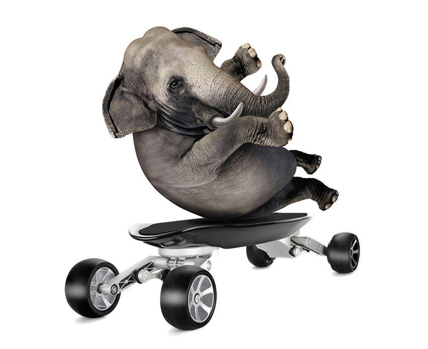 EcoRider E7-1 Carbon Fiber 4 Wheel Electric Skateboard