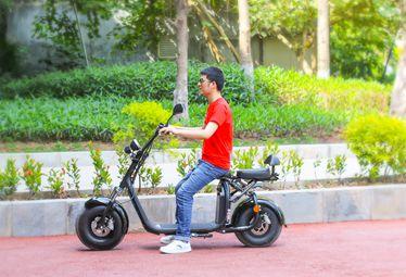EcoRider EEC Citycoco Electric Scooter LT018