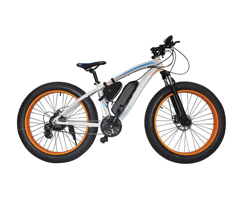 EcoRider E6-5 Two Big Wheel Electric Bike